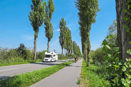 Bodensee Pappelallee